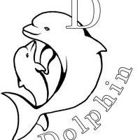 delfin-11