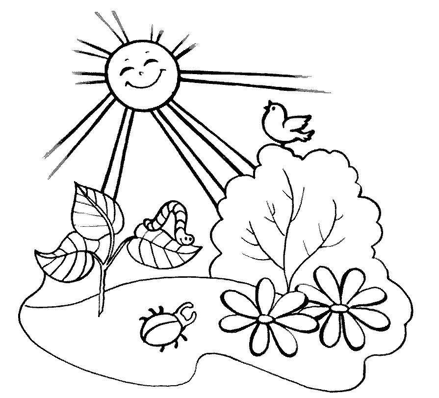 Летняя раскраска для детей