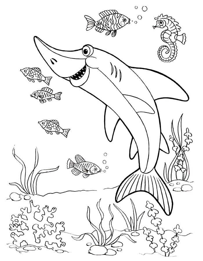 раскраски подводные животные распечатать