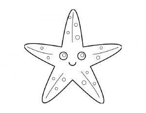 Raskraska-Zvezda-40