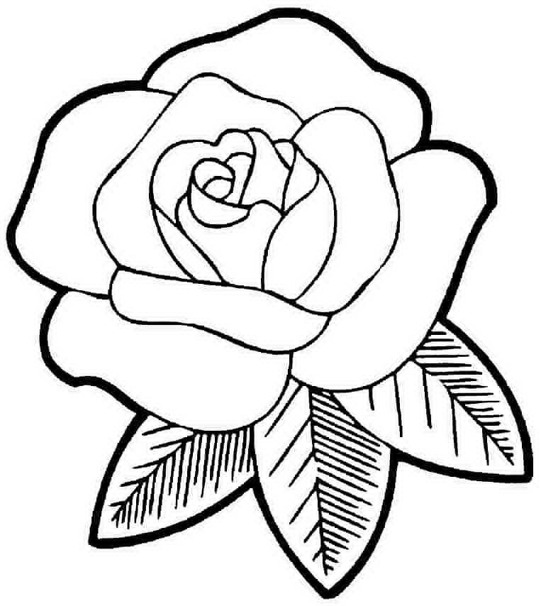 Скачать раскраску цветы бесплатно