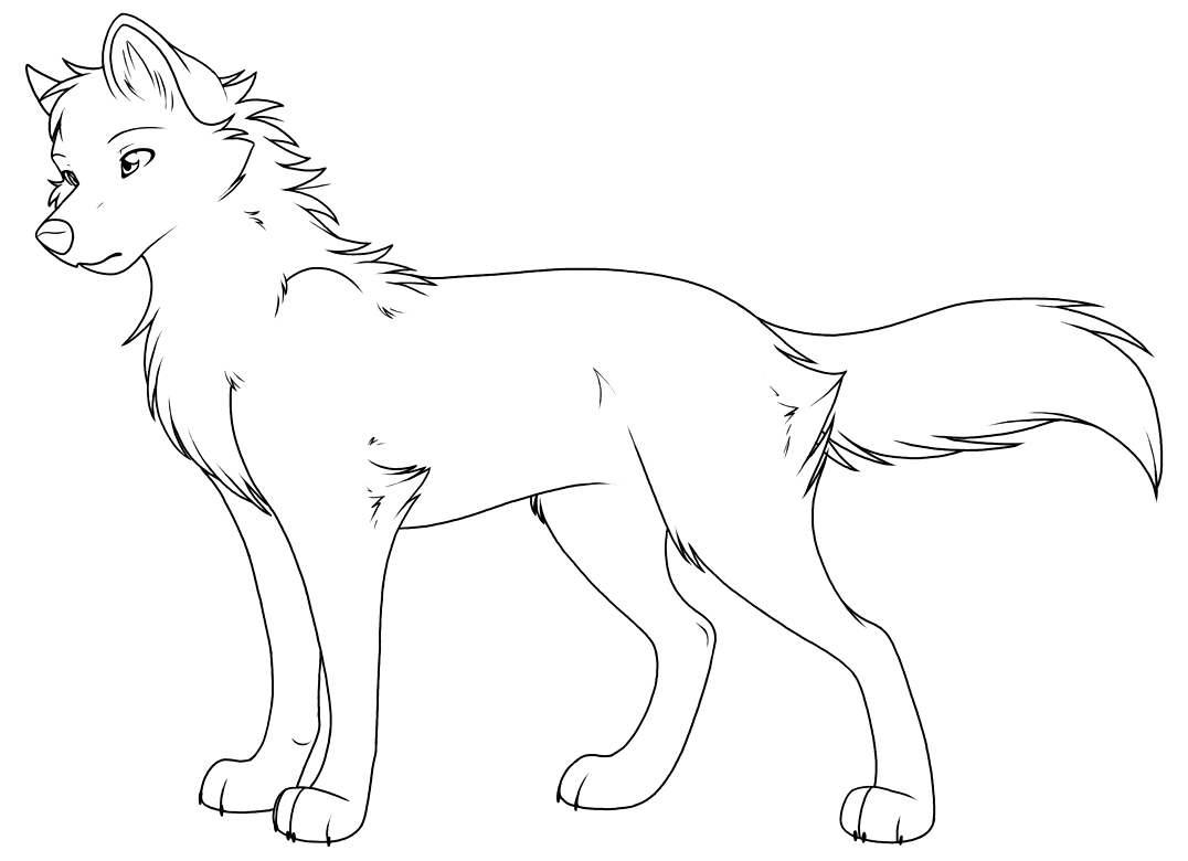Волки картинка раскраска 37