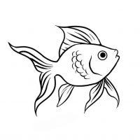 zolotaya-rybka-25