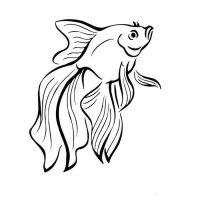 zolotaya-rybka-35