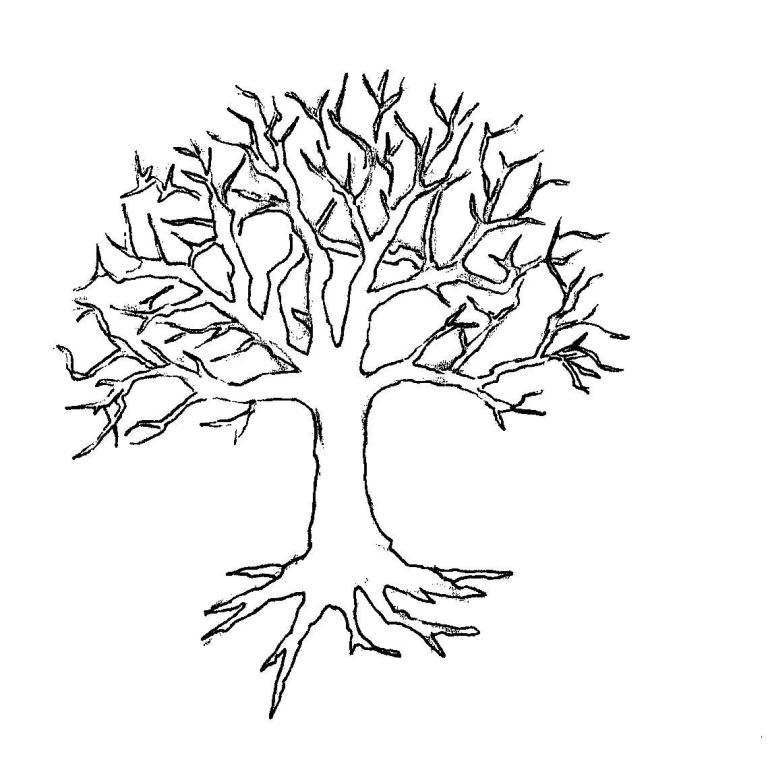 раскраски дерево без листьев скачать и распечатать бесплатно