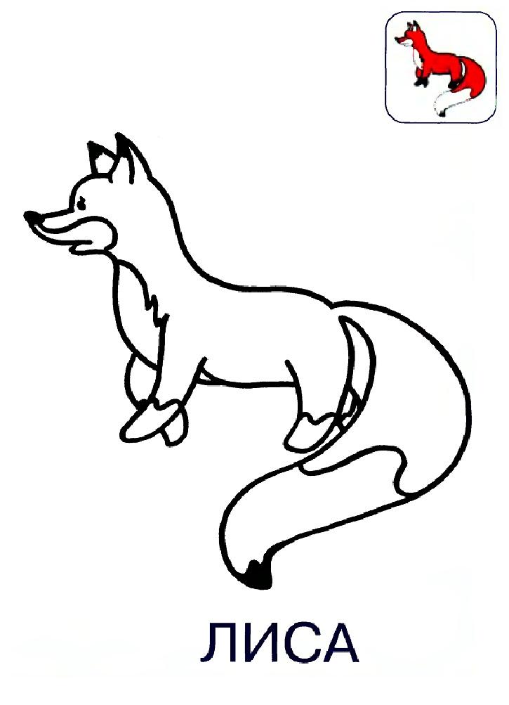 картинка раскраска лисы для детей