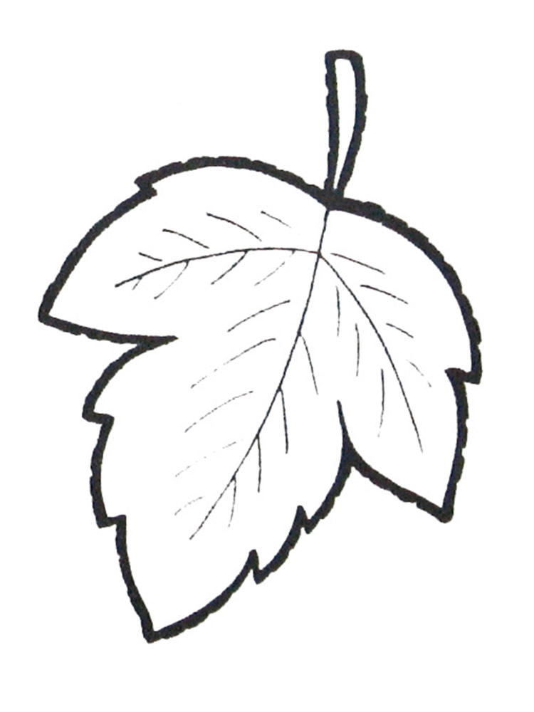 Раскраски Листья скачать и распечатать бесплатно, рисунки ... Пасха Рисунки Карандашом