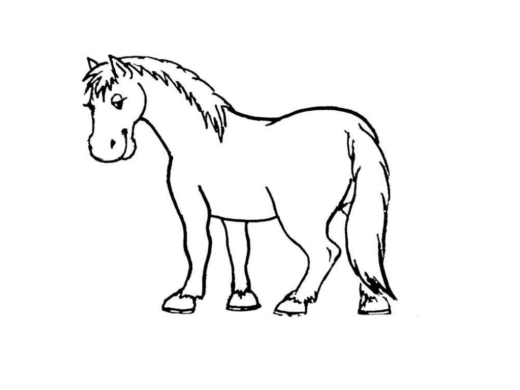 Картинки лошадки для детей раскраска