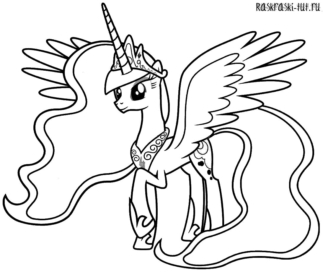 Раскраска принцесса на пони