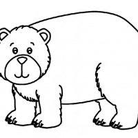medved-2