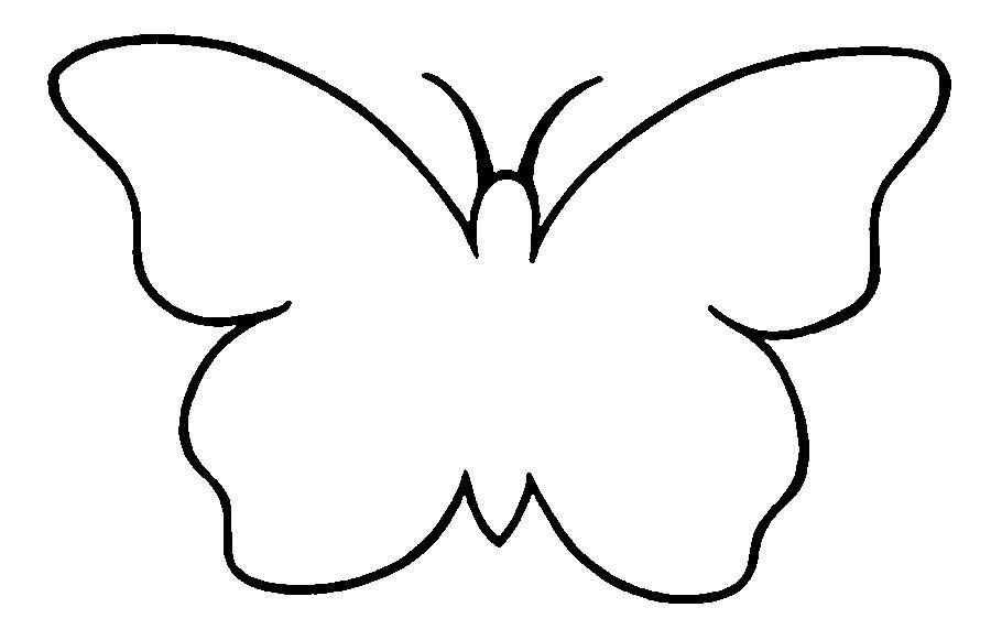 Рисунки и шаблоны бабочек для