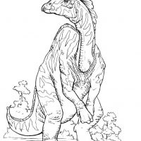 raskraski-dinozavry-16