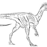 raskraski-dinozavry-18