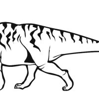 raskraski-dinozavry-20