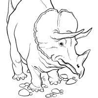 raskraski-dinozavry-28