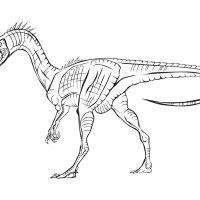 raskraski-dinozavry-4