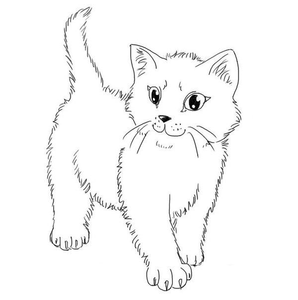 Раскраска для девочек котята онлайн - 7