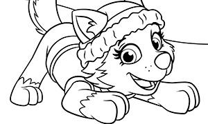 Раскраска для девочек щенячий патруль онлайн бесплатно - 10