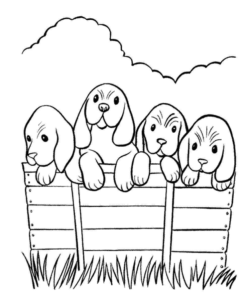 Раскраски собачки - 2