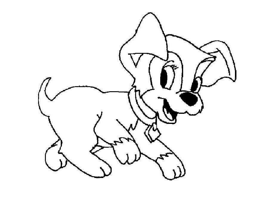 Рисунки раскраски собака