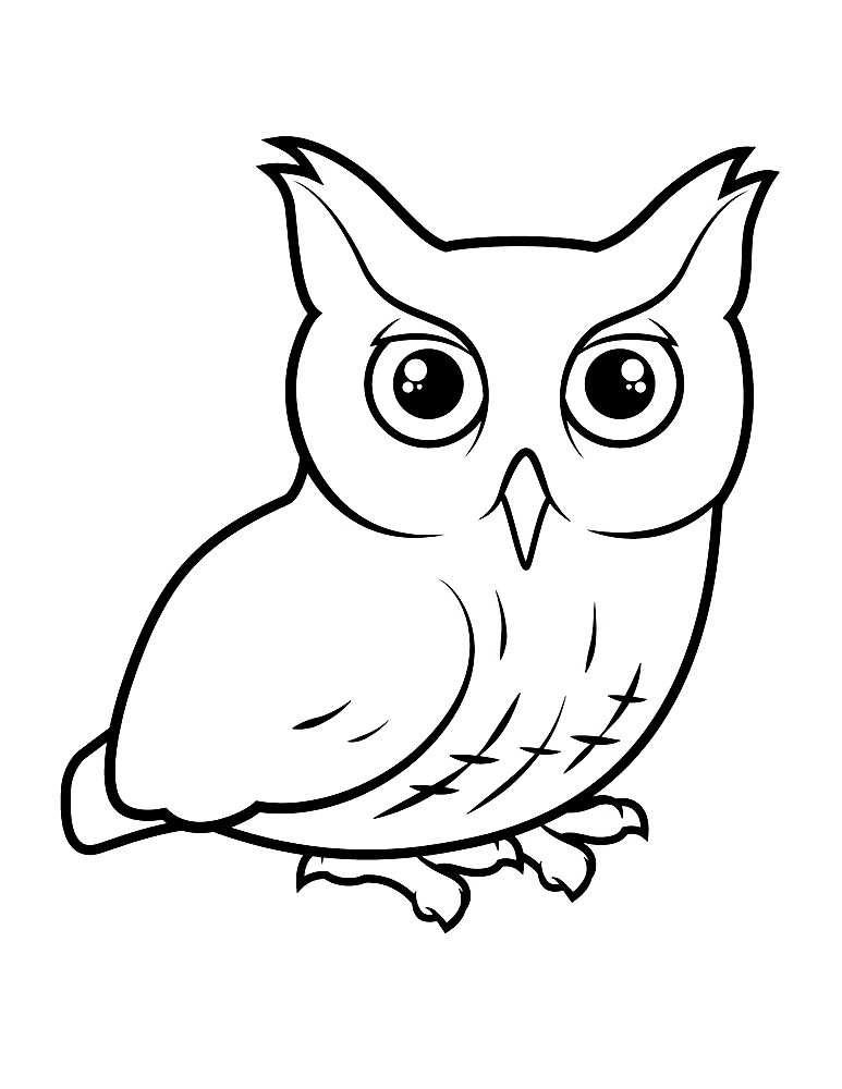 раскраски сова скачать и распечатать бесплатно рисунки