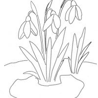 vesennie-tsvety-1