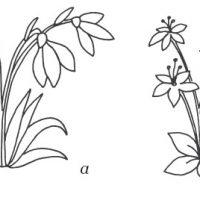 vesennie-tsvety-20