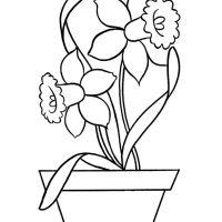 vesennie-tsvety-22