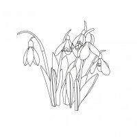 vesennie-tsvety-9
