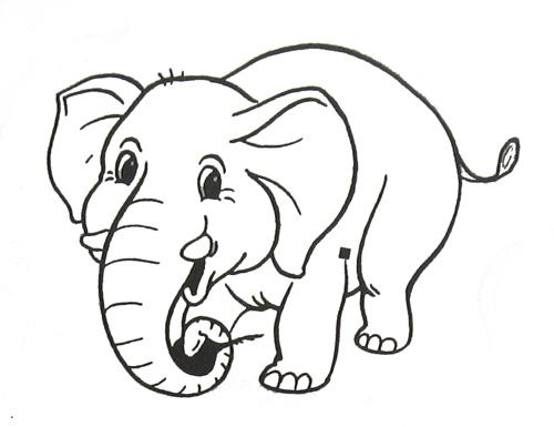раскраски с рисунками животных раскраски животных для детей